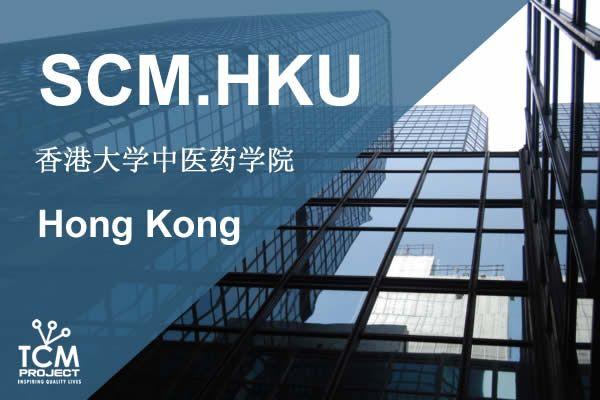 Universidad MTC Hong Kong
