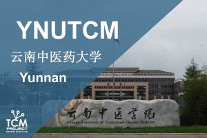 yunnan Universidad medicina china acupuntura
