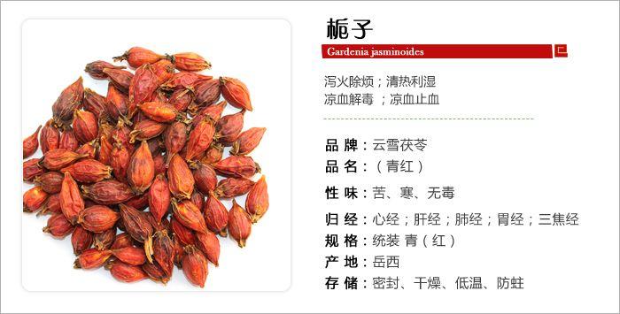 Gardenia: (栀子Zhi zi) FRUCTUS GARDENIAE: Elimina el calor de los tres Jiaos conduciendo el fuego hacia abajo e integrando el efecto de las 3 materias anteriores de la fórmula de 黃連解毒湯.
