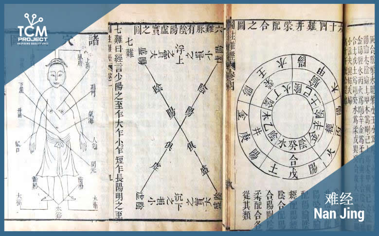 nanjing canon of 81 dificculties chinese medicine