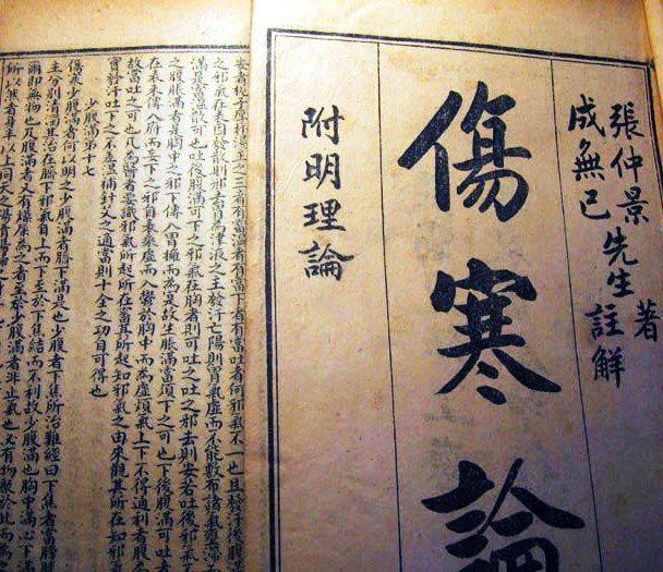 shang han lun 2